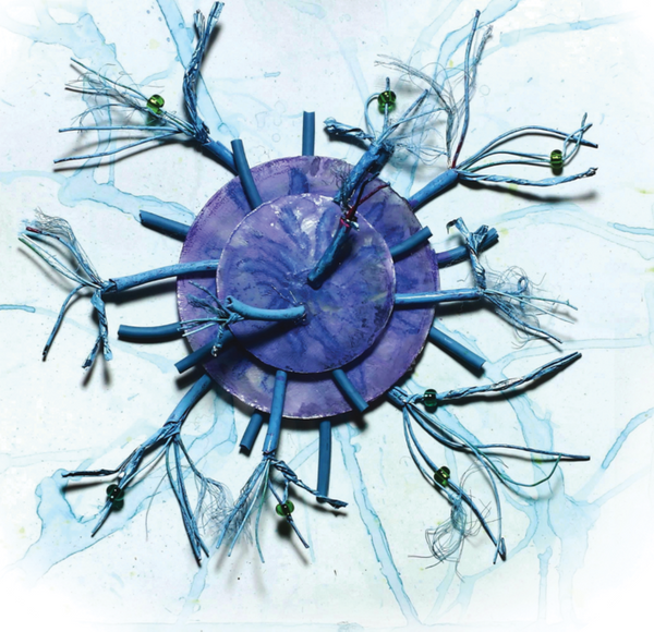 T-cell's Dangerous Roots: The Cost of Immunity